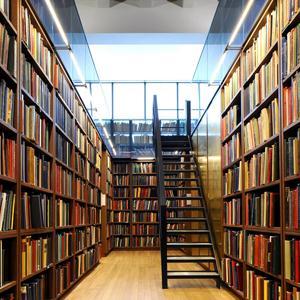 Библиотеки Анциферово